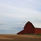 The Red Barn by Taylor Sawyer