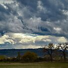 The Skies the Limit by Barb Miller
