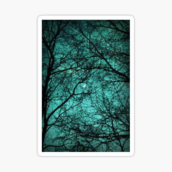 Schöne Dunkelheit - Halbmond in den Bäumen Sticker