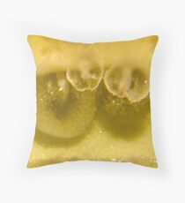 Can You Guess? Throw Pillow