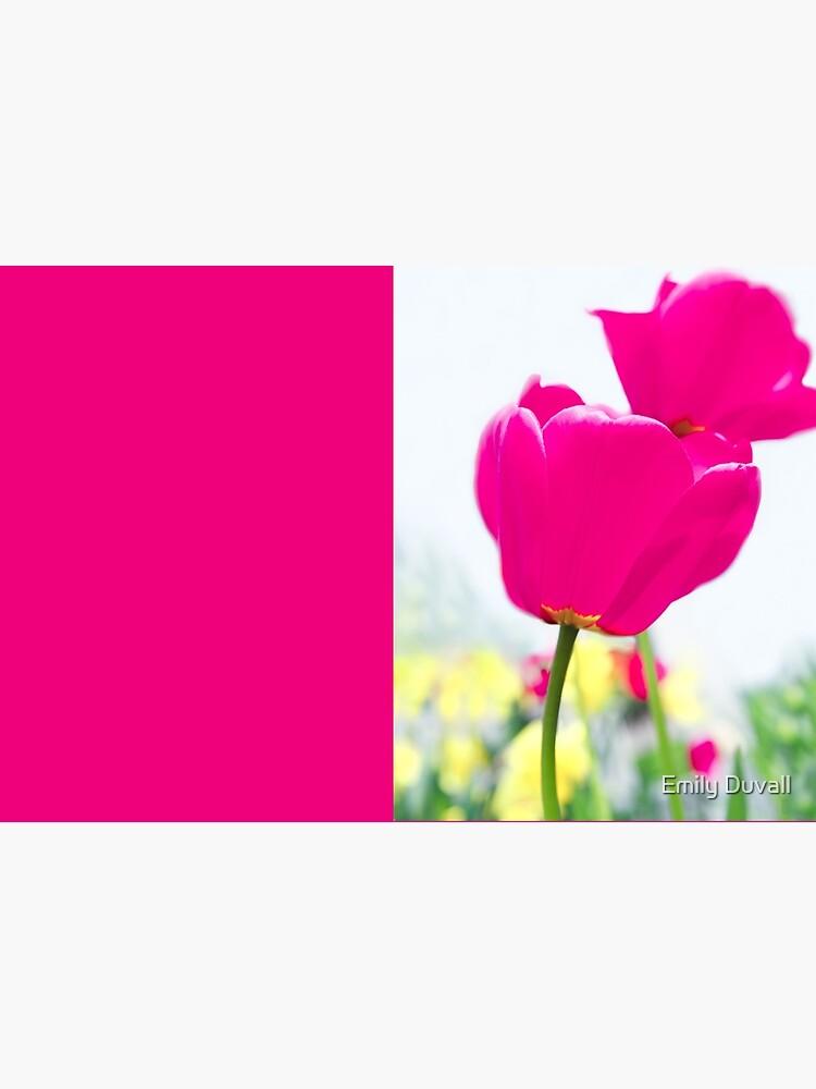 Hot Pink Prelude by PeaceAndBeauty