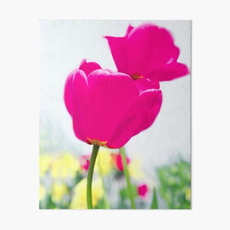 Hot Pink Prelude Art Board Print