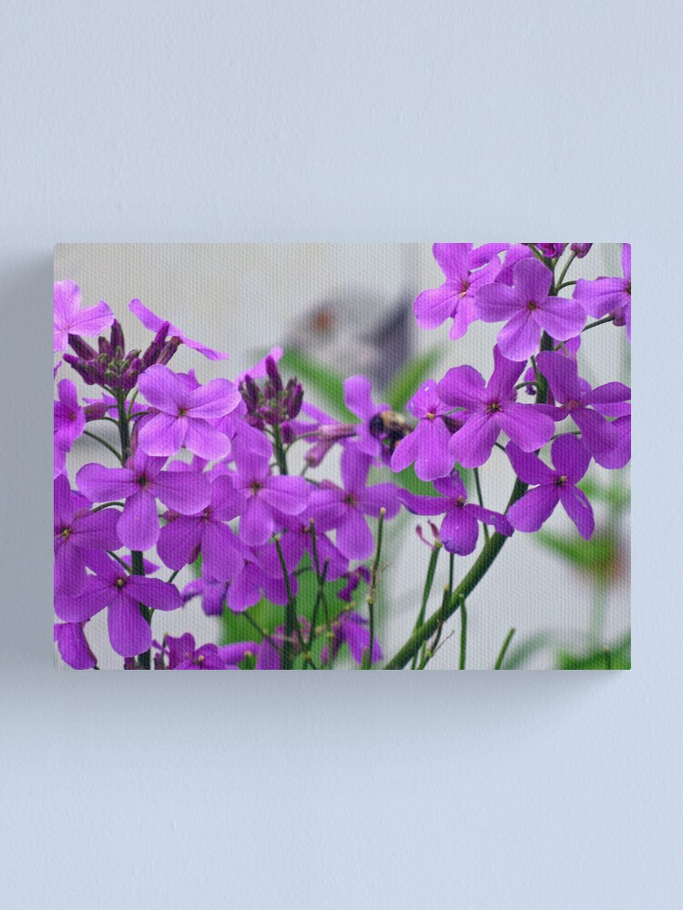 Alternate view of Weed? What Weed? Canvas Print