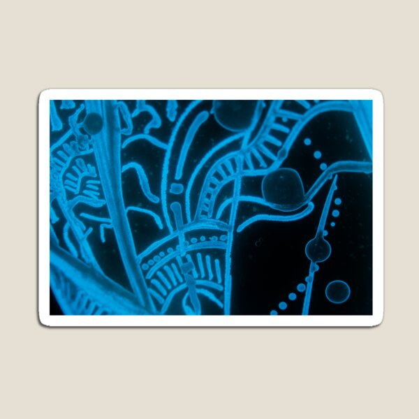 Glowing Bacterial Art - Abstract Magnet
