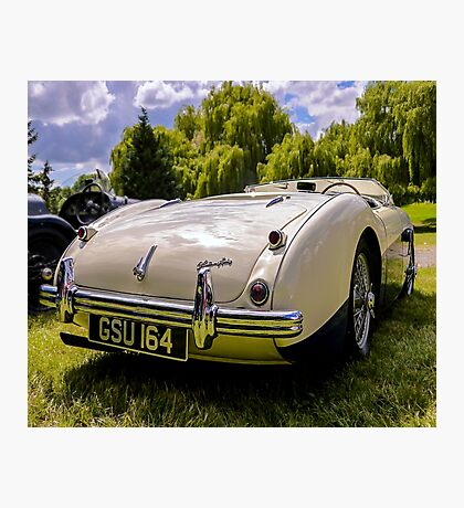 1955 Austin Healey Photographic Print