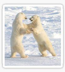 Dance of the white bears (I) Sticker