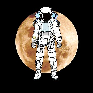 Moon landing astronaut by phys