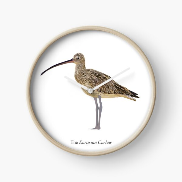 The Eurasian Curlew Clock
