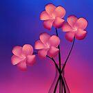 Rose Fire by Stephanie Rachel Seely