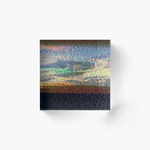 paon de nuit sur crepit de ciel Bloc acrylique