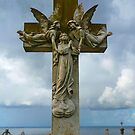 Waverley Cemetery by JodieT