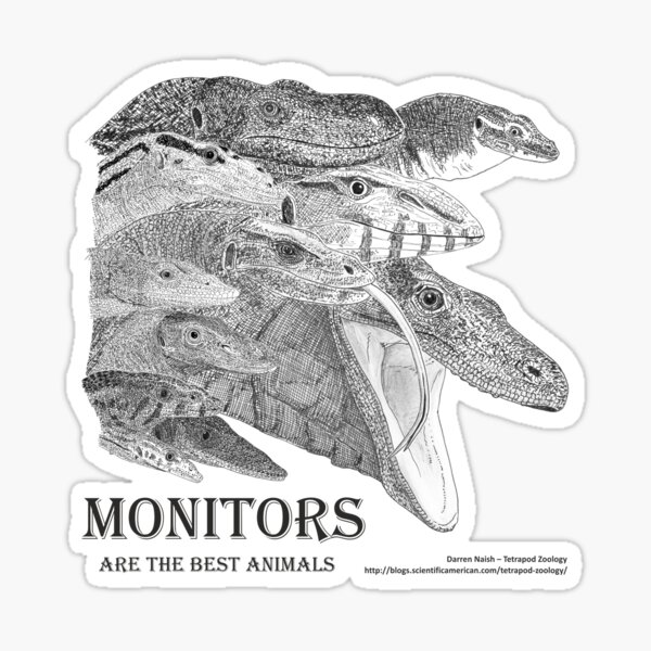 Monitors are the best animals Sticker