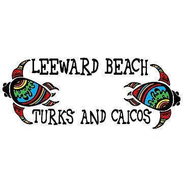 Turks and Caicos turtles - Leeward Beach by RBBeachDesigns