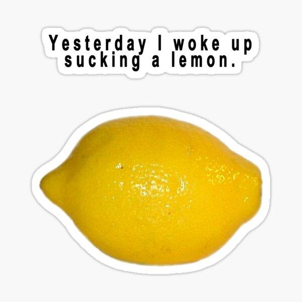 "90's Alternative ""Yesterday I woke up sucking a lemon"" Rock  Sticker"