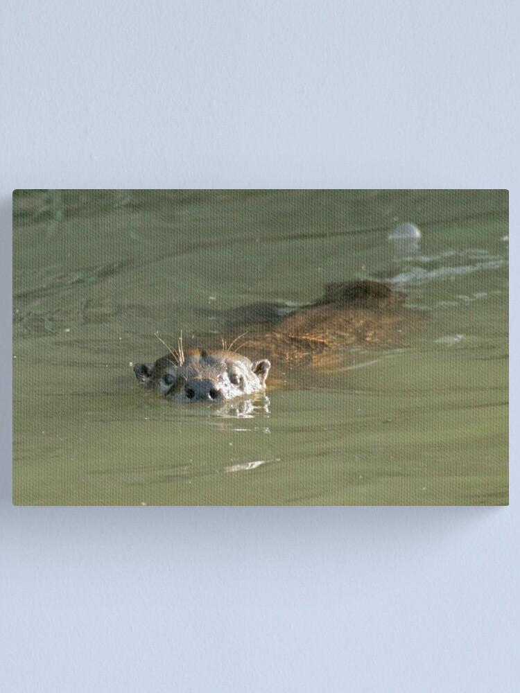 Alternate view of Wild otter! Canvas Print