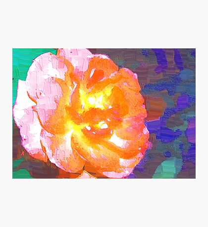 Abstract of full pink and peach rose Photographic Print