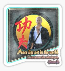 Kung Fu vintage 'aged' version Sticker