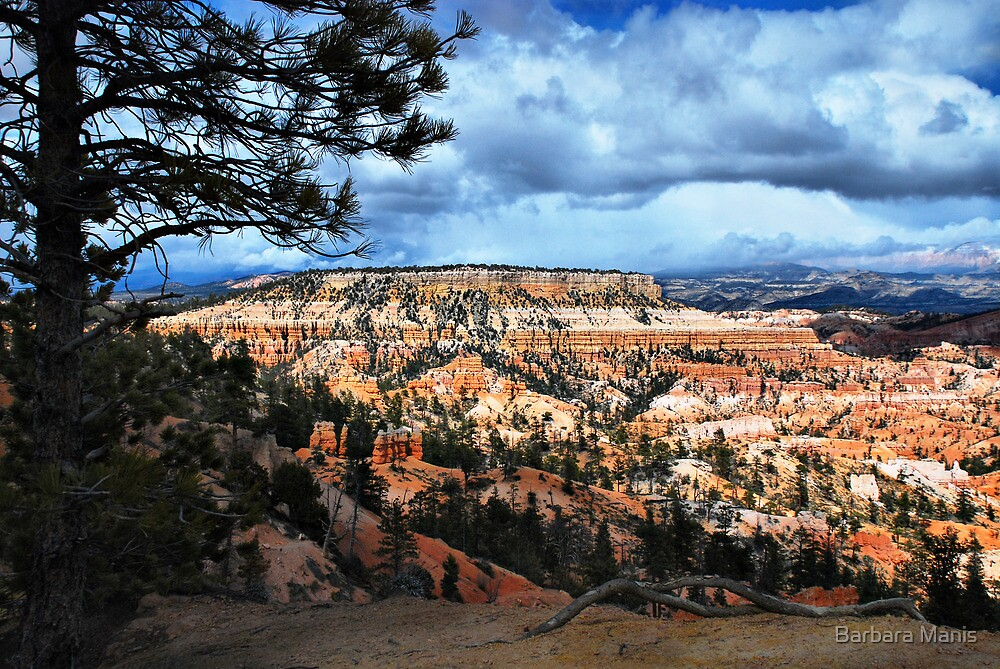 Exploring Southwest Utah by Barbara Manis