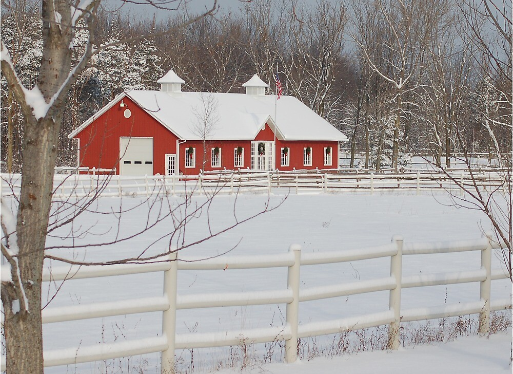 Home on the Farm by rondabusscher