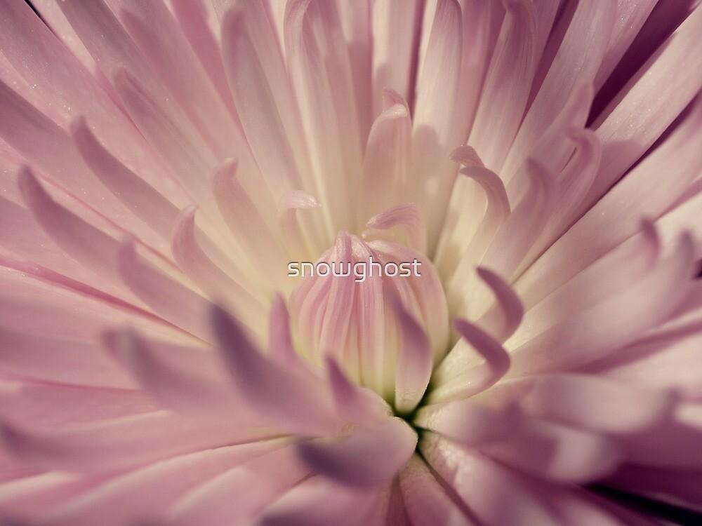 a may morning by sabrina card