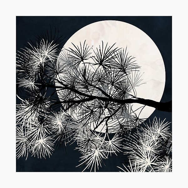 Pine Tree with Moon Graphic black and white Print Photographic Print
