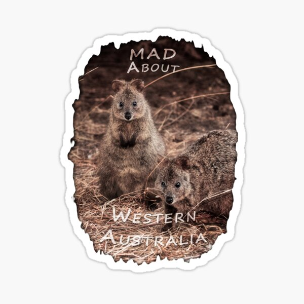 Quokkas - MAD About Western Australia Sticker