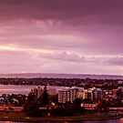 Panoroma from King's Park by Elisabeth Ansley
