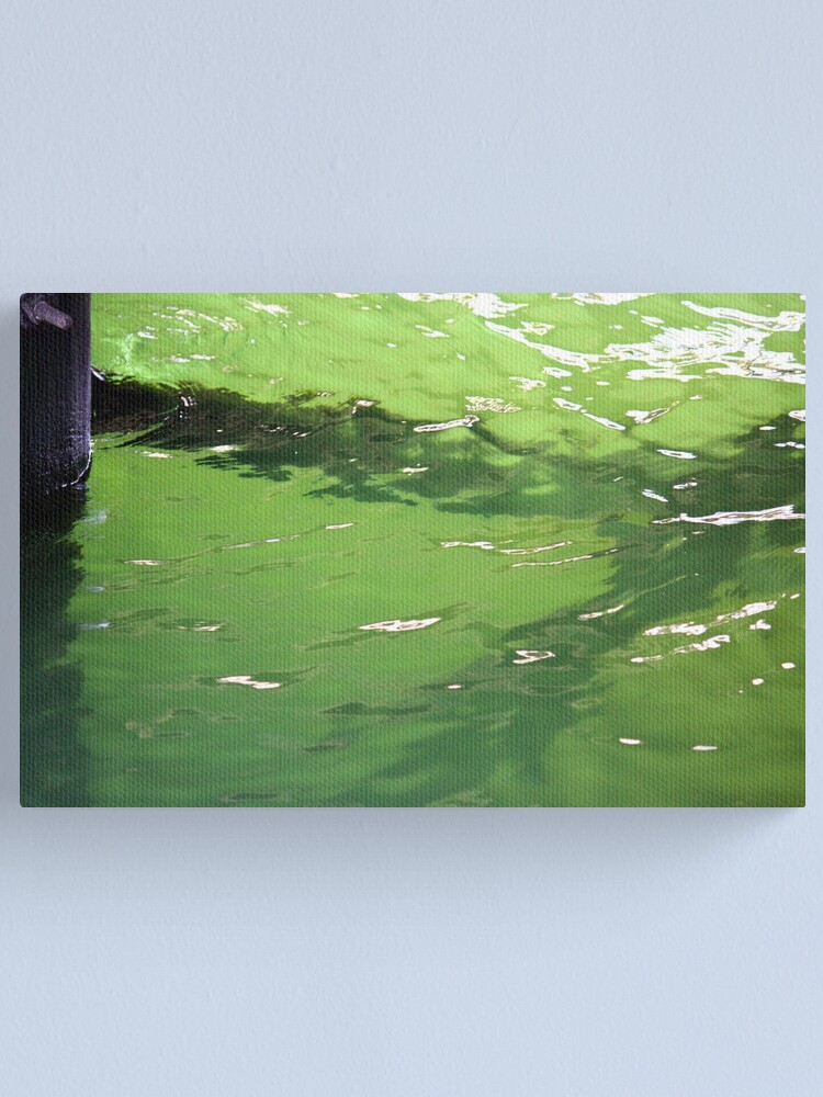 Alternate view of Growth under the Dock Canvas Print