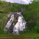 High Falls-DuPont State Forest by Kerri Kenel
