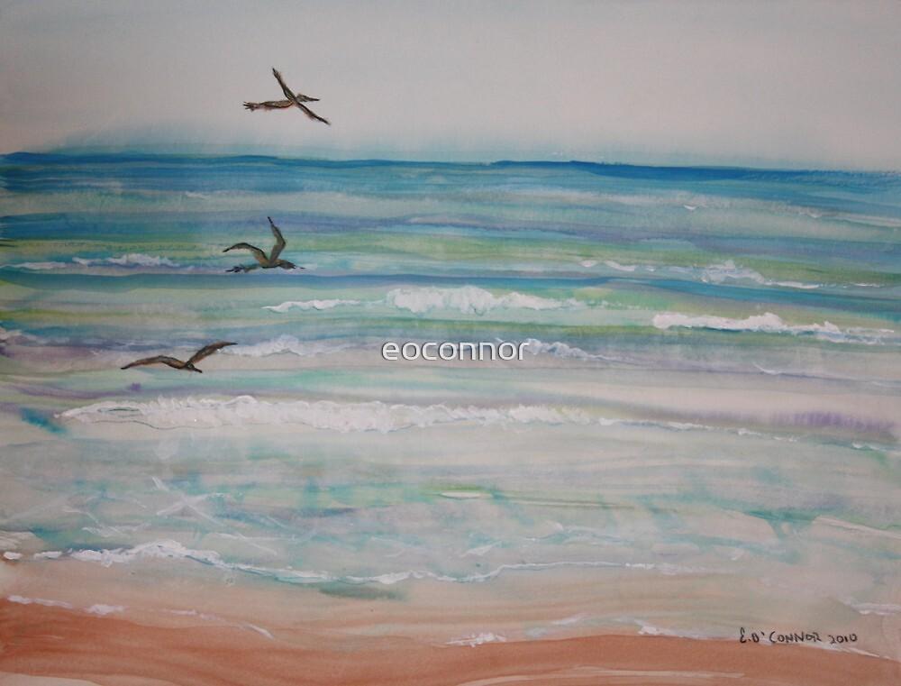 Daytona Beach Florida  by eoconnor