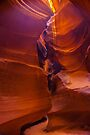 Antelope Canyon Tumble Weed by photosbyflood