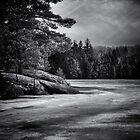Gullwing Lake Nr. 4 von Brian Carson