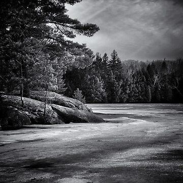 Gullwing Lake No 4 by learningcurveca