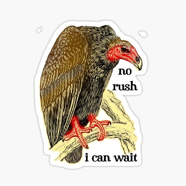 polite vulture can wait Sticker