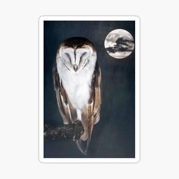 Artful Owl Sticker