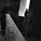 Person in Window by Andrew  Makowiecki