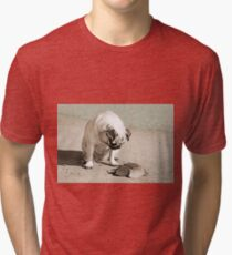 Please Play With Me Tri-blend T-Shirt