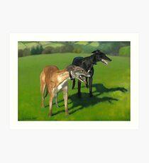 Greyhound Portrait - Oil on Canvas Art Print