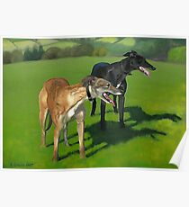 Greyhound Portrait - Oil on Canvas Poster