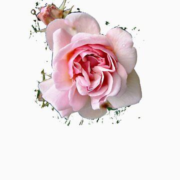 Pink Rose T SHIRT by Shoshonan
