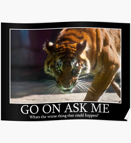 Tiger Terror Poster