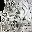 Brothers - Graphite Pencil by Susan van Zyl