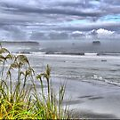 The Mists of Greymouth ( 2 ) by Larry Lingard-Davis