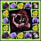 Flowers of Spring Collage von BlueMoonRose