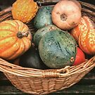 Pile of Pumpkins by emmadoes-art