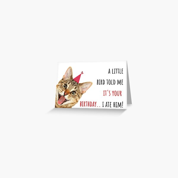 Cat meme birthday card, sticker, mug, crazy cat lady, birds, party, ideas, gifts, presents, good vibes, humor, humour, banter, puns Greeting Card
