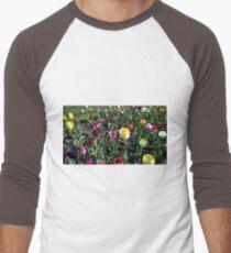 Spring Variety Tulips in Sunset Men's Baseball ¾ T-Shirt