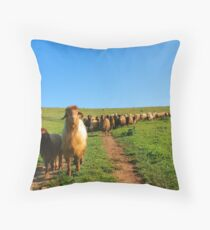 We Came in Peace Throw Pillow