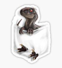 Pocket Protector - Male Raptor Sticker
