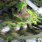 Flywheel of life by branko stanic